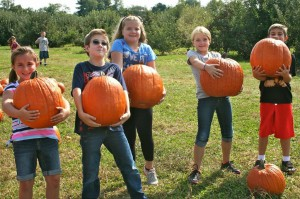 Pick pumpkins at Battleview Orchards